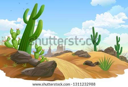 Rocks, Saguaro and cactus infested desert region. A sandy road across desert vegetation.