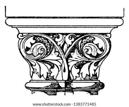 Romanesque Coupled Capital, looks like two capitals, that are conjoined together, vintage line drawing or engraving illustration.