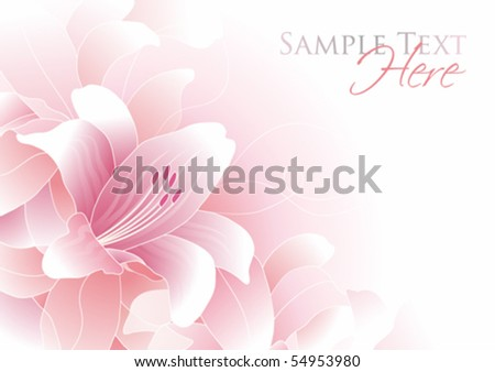 Romantic background with pink lily and copy space, vector illustration