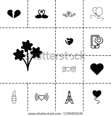 romantic icon collection of 13