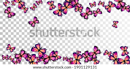 romantic purple butterflies