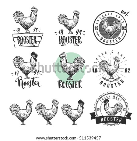 Rooster. Cock. Chicken product logotypes set. Hen meat and eggs vintage produce elements. Badges and design elements for the chicken manufacturing. Vector illustration