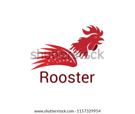 Rooster logo design vector illustration