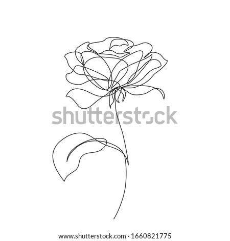 rose flower icon continuous