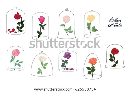 rose flower under a glass dome...
