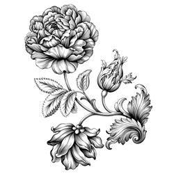 Rose flower vintage Baroque Victorian floral ornament frame border leaf scroll engraved retro pattern decorative design tattoo black and white filigree calligraphic vector