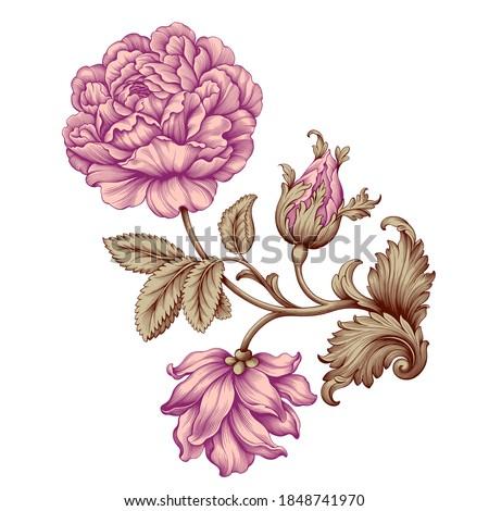 Rose flower vintage pink Baroque Victorian floral ornament frame border golden leaf scroll engraved red retro pattern decorative design tattoo botany filigree calligraphic vector