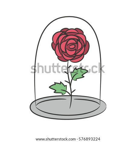 rose in a flask of glass on