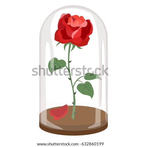 rose in a flask of glass on the