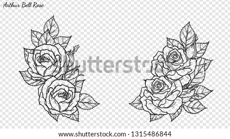 rose ornament vector by hand