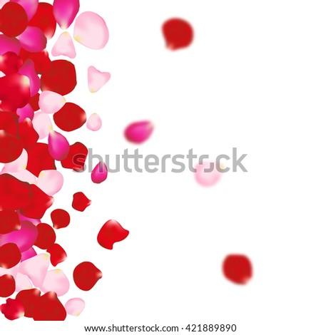 rose petals background for