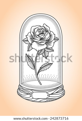 Rose under a glass dome. Tattoo style drawing.