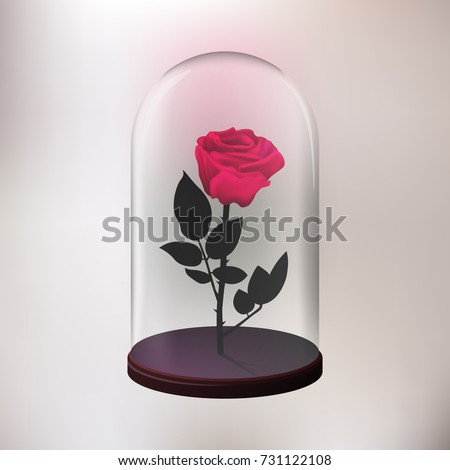 Download beast wallpaper 240x320 wallpoper 35013 for Rose under glass