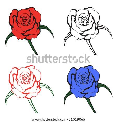 Rose vector illustration.
