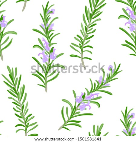 Rosemary seamless pattern. Green branches of fragrant rosemary plant with purple flowers on white background. Vector illustration of aromatic herbs, spicy seasoning in cartoon simple flat style.