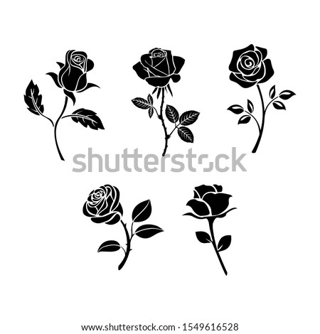 Roses hand drawn color set. Black line rose flowers inflorescence silhouettes isolated on white background. Icon roses collection. Vector doodle illustration.