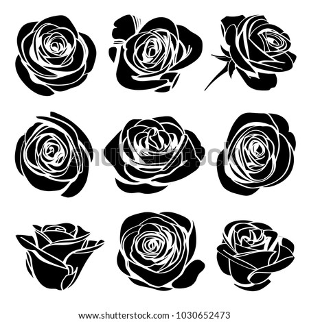 Roses hand drawn set. Black silhouettes rose flowers inflorescence with white lines isolated on white background. Icon collection. Vector doodle illustration