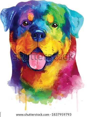 Rottweiler colorful dog portrait. Watercolor hand drawn illustration converted into vector. Zdjęcia stock ©