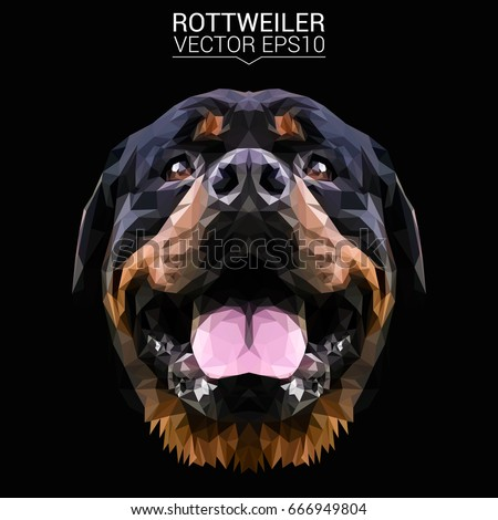 rottweiler dog animal low poly...