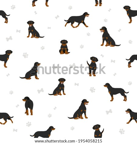 Rottweiler seamless pattern. Different poses, coat colors set.  Vector illustration Zdjęcia stock ©