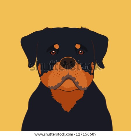 Rottweiler, The buddy dog