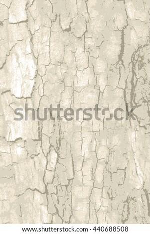 rough natural tree bark wood