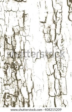 rough tree bark wood grunge