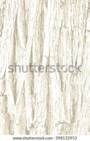 rough tree bark wood with