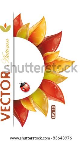 round design of autumnal leaves