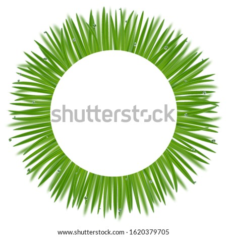 round frame from grass with