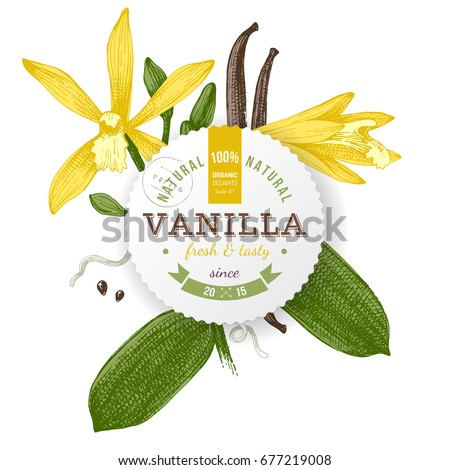 Round label with type design and hand drawn vanilla plant