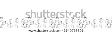 row of contour tulip flowers