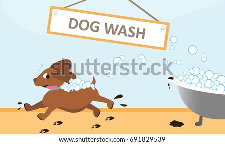 runaway dog wash from bubble