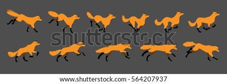 running an animal  a fox the
