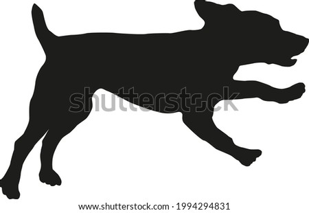 Running and jumping russian spaniel puppy. Black dog silhouette. Pet animals. Isolated on a white background. Vector illustration. Zdjęcia stock ©