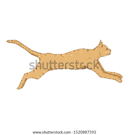 Running Cat. Vector Cartoon Feline Illustration