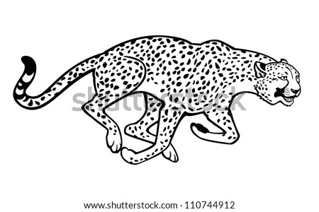 running cheetah black and white vector picture isolated