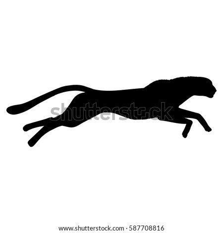 Running cheetah silhouette. Hand drawn image. Black white vector illustration.