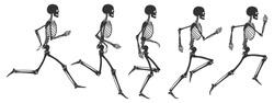 Running human skeleton. 5 black silhouettes isolated on white background. Vector illustration
