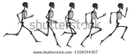 Running human skeleton. 5 black silhouettes isolated on white background. Vector illustration