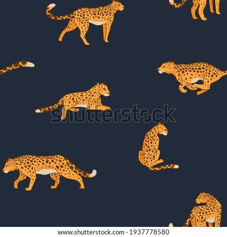 running or hunting animal  big