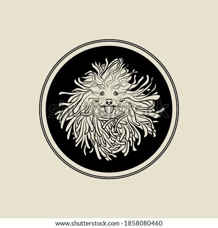 Running puli dog in black circle. Dog with dreadlocks. Vector illustration. Zdjęcia stock ©