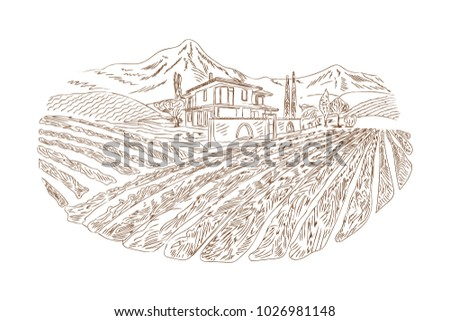rural house and wine yard