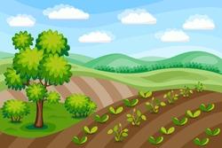 Rural landscape. Agriculture background