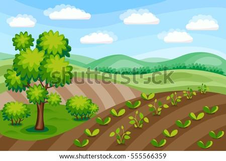 rural landscape. agriculture...