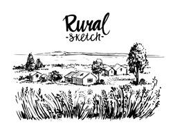 Rural landscape. Hand drawn illustration converted to vector