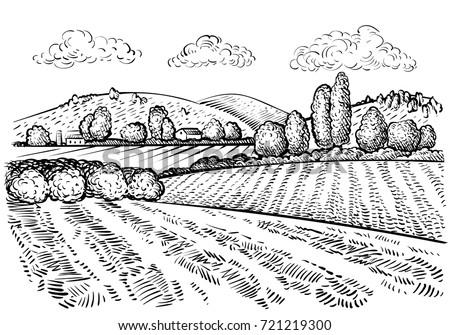 rural landscape  handdrawn