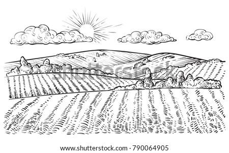 rural landscape  vector vintage