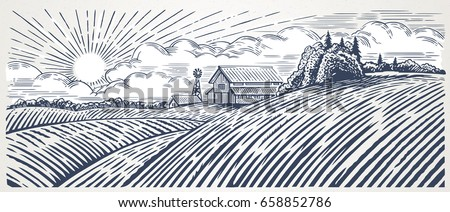 rural landscape with a farm in