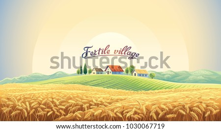 rural landscape with a wheat